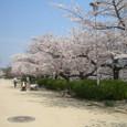 4/8 大阪城西の丸庭園へ