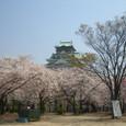 4/8 西の丸庭園より望む大阪城